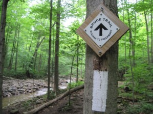 Bruce_Trail_Sign_and_Blaze_-_white