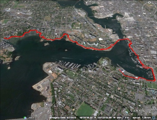 harbour walk August 8